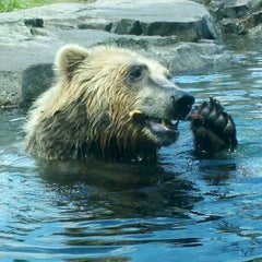 Photo taken at Minnesota Zoo by Miranda N. on 5/28/2012