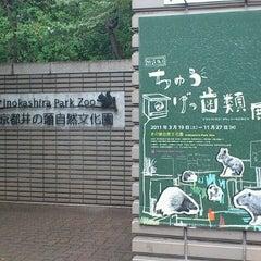 Photo taken at 井の頭自然文化園 by Akashi S. on 8/15/2011