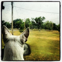 Photo taken at Winfield Fairgrounds by Drew D. on 8/24/2012