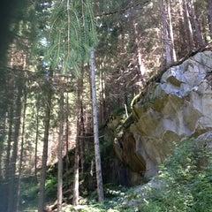 Photo taken at Biotop Rasner Möser Biotopo by Elisa C. on 8/1/2012