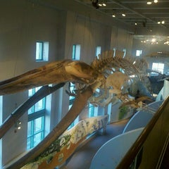 Photo taken at North Carolina Museum of Natural Sciences by Rif R. on 1/28/2012