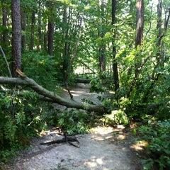 Photo taken at Burke Lake by Jennifer R. on 6/30/2012