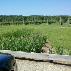 Photo taken at Silver Leaf Vineyard and Winery by Emilee R. on 6/20/2012