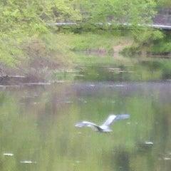 Photo taken at Mine Falls Park by John S. on 5/11/2012