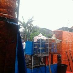 Photo taken at Pasar Burung Jatinegara by Prs T. on 3/25/2012