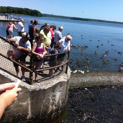 Photo taken at Spillway at Pymatuming State Park by Frances C. on 7/30/2011