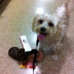 Photo taken at PetSmart by Jody G. on 5/23/2012