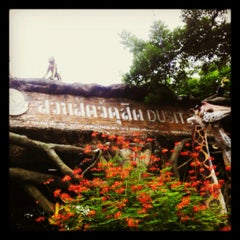 Photo taken at สวนสัตว์ดุสิต (Dusit Zoo) by Parinya S. on 6/1/2012