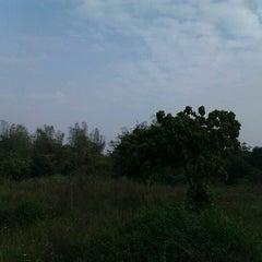 Photo taken at 高雄市熱帶植物園 by Conrad Y. on 2/25/2012