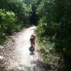 Photo taken at Spanish Pond at the Timucuan Preserve by Ray M. on 5/14/2012