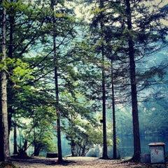 Photo taken at Bohinjsko jezero (Bohinj Lake) by Wannes D. on 9/4/2012