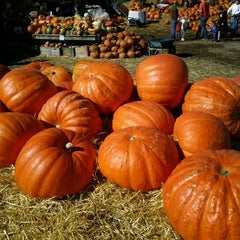 Photo taken at Cox Farms Fall Festival by Ganesh on 10/15/2011