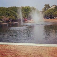 Photo taken at University of South Carolina by Lauren Michelle B. on 4/5/2012