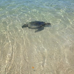 Photo taken at Waialea Beach (Beach 69) by Julie V. on 4/9/2012