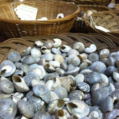 Photo taken at Bibbey's Shell Shop by Liza on 9/9/2012