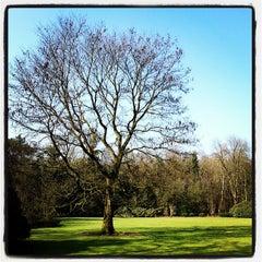Photo taken at De tuin van VION by Roel C. on 3/15/2012