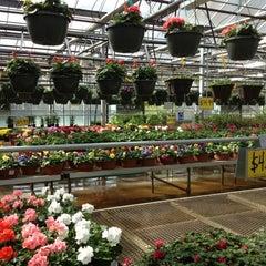 Photo taken at Lynde Greenhouse & Nursery by Caroline D. on 4/7/2012