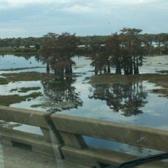 Photo taken at Henderson Swamp by Eddie T. on 11/12/2011
