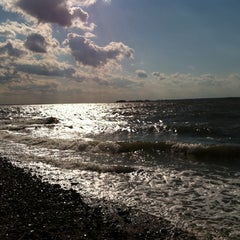 Photo taken at Greenwich Point Park (Tod's Point) by Anthony C. on 10/15/2011
