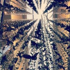 Photo taken at Neiman Marcus by John E D. on 9/12/2012
