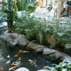 Photo taken at Embassy Suites by Hilton San Francisco Airport Waterfront by Christopher B. on 10/23/2011