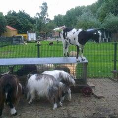 Photo taken at Kinderboerderij Otterspoor by Danny F. on 8/31/2012