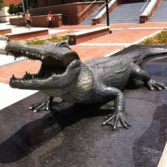 Photo taken at University of Florida by Timothy R. on 5/30/2012