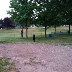 Photo taken at Medina Dog Park by Jennifer on 6/30/2012