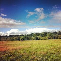 Photo taken at Hampstead Heath by Genevieve S. on 6/24/2012