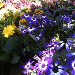 Photo taken at The Home Depot by Mikki E. on 4/7/2012
