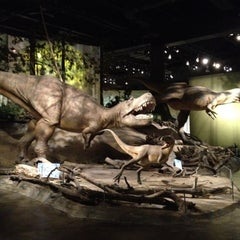 Photo taken at Royal Tyrrell Museum of Paleontology by yoshimitsu s. on 6/10/2012