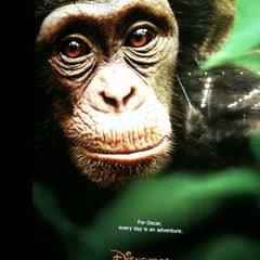 Photo taken at Pittsford Plaza Cinema 9 by Kelly M. on 4/21/2012