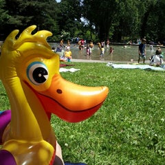 Photo taken at Volunteer Park Wading Pool by Lacey S. on 7/6/2012