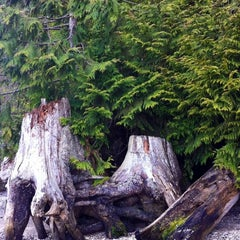 Photo taken at Sequim Bay State Park by 💜ⓒⓗⓡⓘⓢⓣⓘⓝⓐ . on 4/10/2012