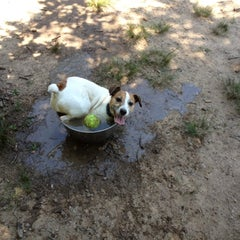 Photo taken at Oakhurst Dog Park by Peter F. on 6/17/2012