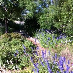 Photo taken at San Antonio Botanical Garden by Allison H. on 4/17/2012