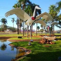 Photo taken at Aeroporto Internacional de Campo Grande (CGR) by Charles V. on 7/10/2012
