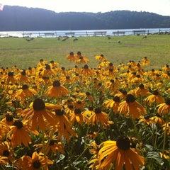 Photo taken at Harvest On Hudson by Paloma B. on 7/29/2012