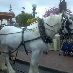 Photo taken at Horse-Drawn Streetcars by bluecat on 3/16/2012
