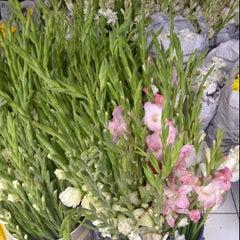 Photo taken at Pasar Bunga Wastukencana by Deddy N. on 2/25/2012