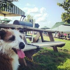 Photo taken at Barrel Oak Winery by Rebecca G. on 5/29/2012