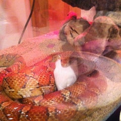 Photo taken at Moby Dick Pet Store by Austin G. on 4/4/2012