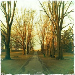 Photo taken at Buchanan Park by Mark K. on 3/1/2012