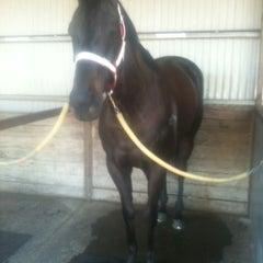 Photo taken at Belmont Park Racecourse by Jen on 9/8/2012