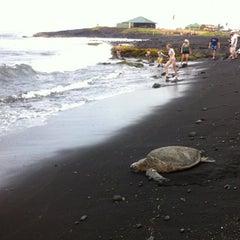 Photo taken at Punalu'u Black Sand Beach by Tamar F. on 7/3/2012