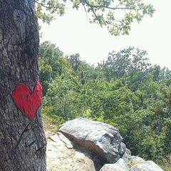 Photo taken at Peavine Falls Overlook by GRAY on 6/29/2012