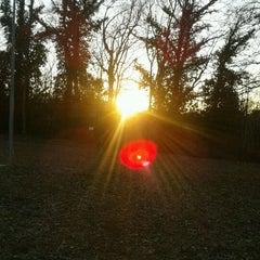 Photo taken at Belverde by Daniela M. on 2/25/2012