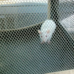 Photo taken at Moby Dick Pet Store by kayla r. on 9/12/2012
