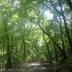 Photo taken at Wissahickon Valley Park by Megan on 8/18/2012