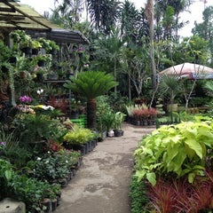 Photo taken at Pasar Burung Kota Malang by Aan C. on 4/8/2012